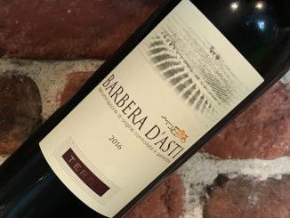 Terre Barbera d'Alba -Ungt och prisvärt från Piemonte
