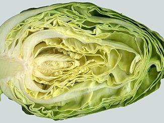 Krämig coleslaw på spetskål -gott till det mesta