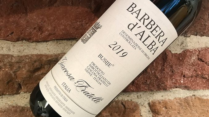 Barbera d'Alba Busije 2019 -prisvärt grillvin